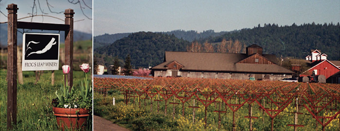 Case Study: Frog's Leap Winery, Rutherford, CA
